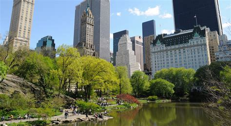 buying a house in new york city 6 ways to decide which mutual fund is right for you dailyfinance