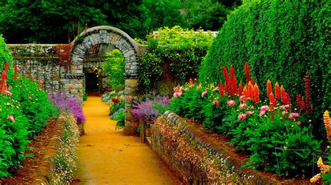 photos flowers gardens 1920x1080 hd garden wallpaper wallpapersafari