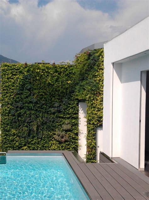 terrazzo con piscina giardino verticale