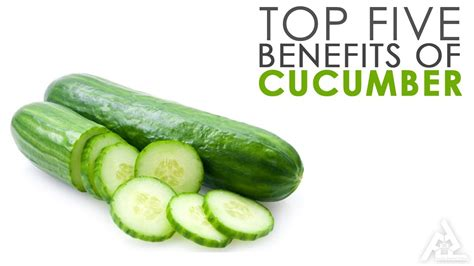 benefits of cucumber top 5 benefits of cucumber best health tips cucumber