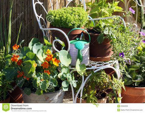 balcony container gardening terrace and balcony container gardening royalty free stock