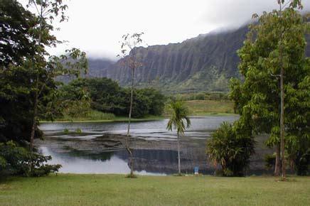 Ho Omaluhia Botanical Gardens Windward Oahu Photo Gallery