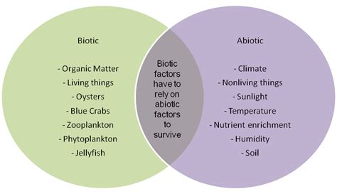 exle of biotic factors what are some exles of biotic factors in an ecosystem
