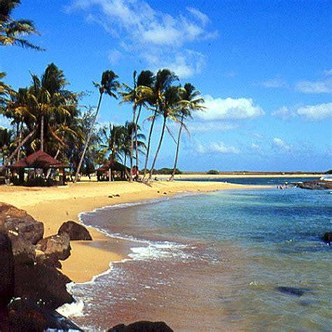 The Tropics   Coastal Living