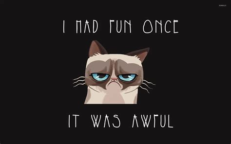 Wallpaper Memes - grumpy cat meme wallpaper wallpapersafari