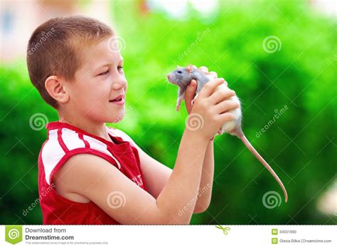trach free for p how one boy s was spared to impact countless others books boy kid with rat pet stock photo image 34551990