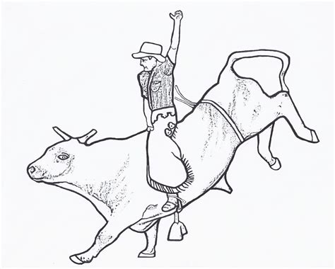 Free Bull Rider Coloring Pages Bull Coloring Pages