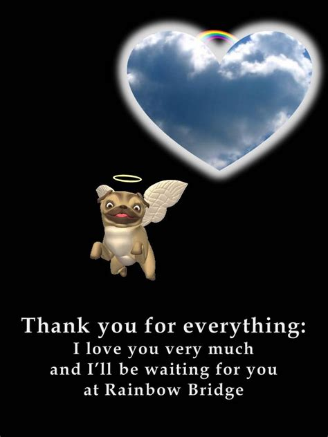 pug saying thank you a pug thank you note pictures photos and images for and
