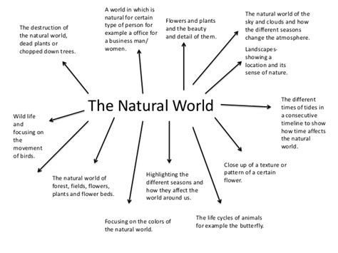 patterns in nature mind map mind map