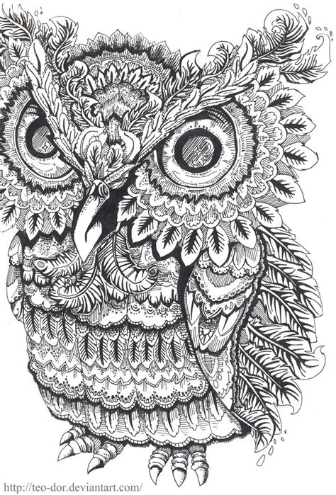 intricate owl coloring pages 17 images about zentangle time on pinterest zen