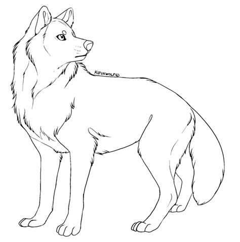 line drawing templates free lineart wolf by kipine on deviantart