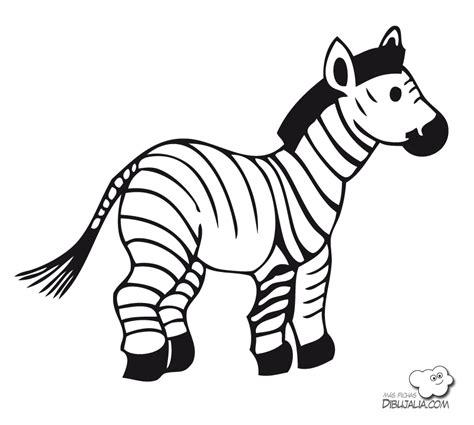 imagenes de animales cebra joven cebra dibujalia dibujos para colorear animales