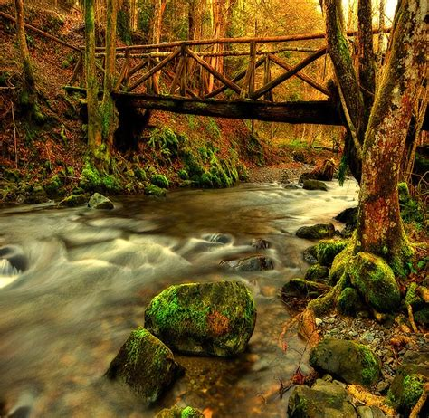 small wooden bridge pinterest discover and save creative ideas