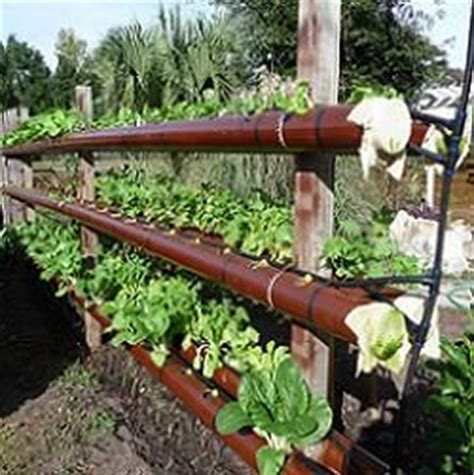 17 best images about aeroponics hydroponics on pinterest