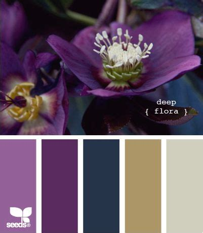 colours that go with purple best 20 purple color schemes ideas on pinterest