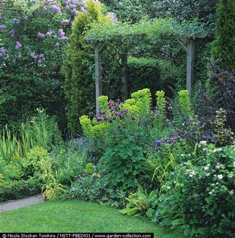 perfect pacific northwest shade garden a plethora of primula pinterest gardens garden