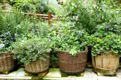 herb garden ideas herb gardens 30 great herb garden ideas the cottage market