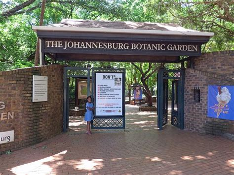 emmarentia botanical gardens jumping in dam picture of johannesburg botanical