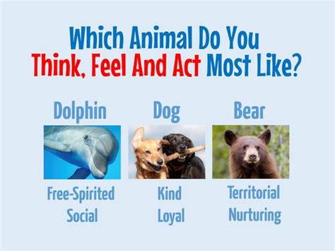 how did the new year animals get their names which animal do you think feel and act most like playbuzz