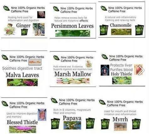 Iaso Tea Detox Plan by 17 Best Images About Total Changes Www Iasotea