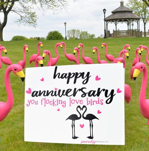 happy anniversary  flocking love birds sneaky flamingo