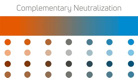 complementary color picker how to create a complementary color scheme alvalyn creative