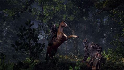 the witcher 3 wild hunt screenshot the witcher 3 wild hunt gets new screenshots and story info