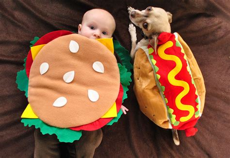 25 pet halloween costumes that are so cute we cant even 60 horribly hilarious halloween costumes for cute pets