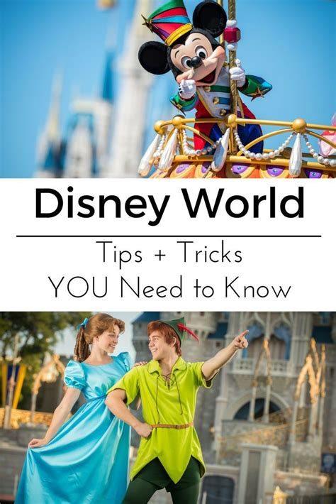 250 tips and tricks for walt disney world resort books 25 best ideas about disney world hacks on