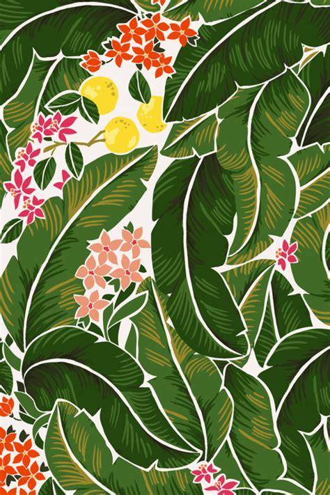 banana leaves karla pruitt jpg