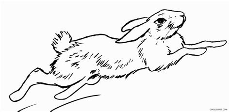 printable rabbit coloring pages for kids cool2bkids printable rabbit coloring pages for kids cool2bkids