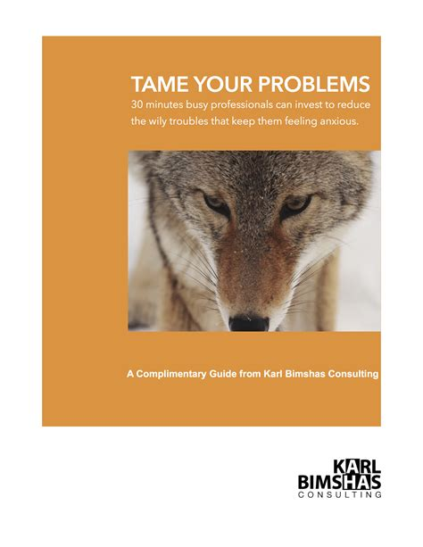 taming trouble books your troubles karl bimshas consulting