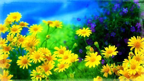 imagenes fondo de pantalla flores protector de pantalla con flores im 225 genes de primavera