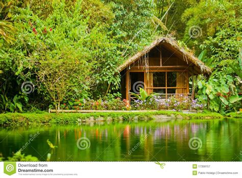 cabin in the jungle royalty free stock photography image