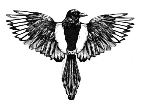 magpie tattoo design 25 trending magpie ideas on bird