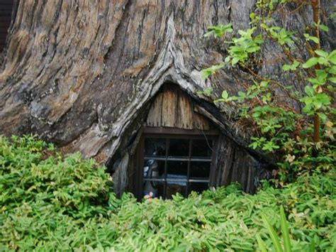 world famous tree house piercy ca address point of