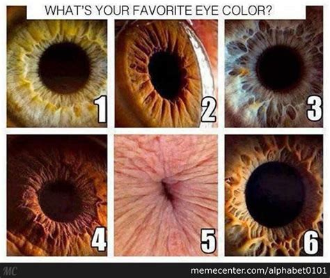 siri what is your favorite color what is your favorite eye color by alphabet0101 meme center