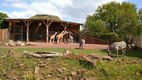 Zoologischer Garten Abfahrten by Zoo Zoologischer Garten Magdeburg Ggmbh Perret In