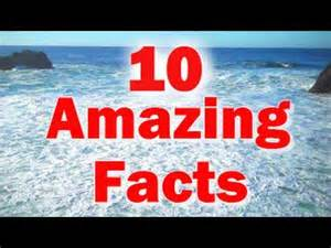 japan facts for kids 10 amazing facts about the japanese earthquake and tsunami