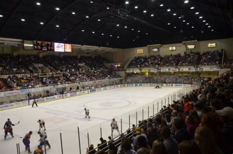 knoxville civic coliseum seating friendly confines bears look to future with again