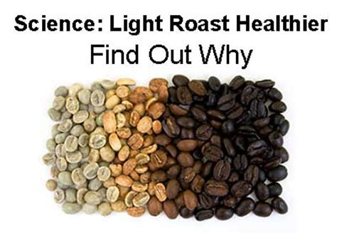 best light roast coffee light coffee roasts more health benefits than roasts