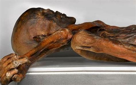 otzi the iceman tattoos 214 tzi the iceman s tattoos may be an early form of