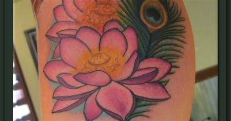 tattoo lotus feather pink lotus flowers and peacock feather tattoo tattoo s
