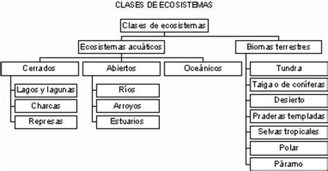 las cadenas migratorias definicion ecosistemas consuelo