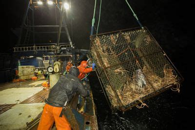 deadliest catch season 11 returns on discovery pop tower deadliest catch programs discovery channel discovery