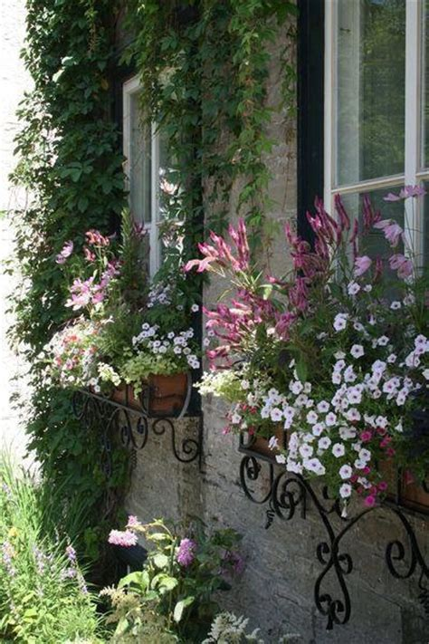 Cottage Window Boxes by Cottage Window Boxes For The Home