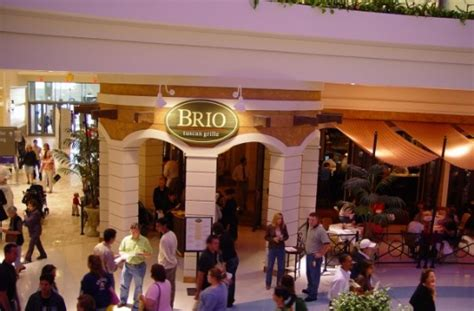 brios tysons brio tuscan grille mclean va runinout food fun fashion