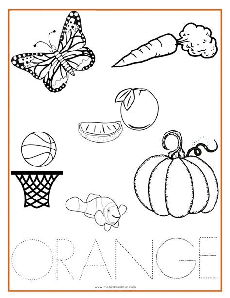 orange color activity sheet other colors the preschool