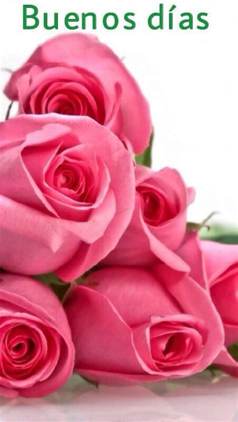 imagenes de rosas q digan buenos dias 17 mejores ideas sobre frases para cu 241 adas en pinterest