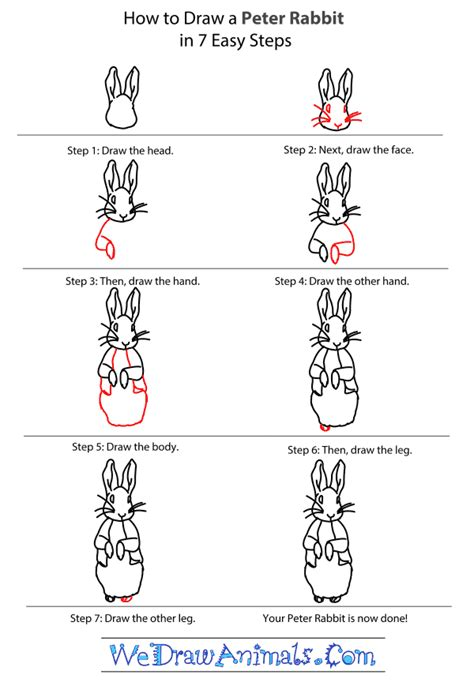 how to a rabbit how to draw rabbit
